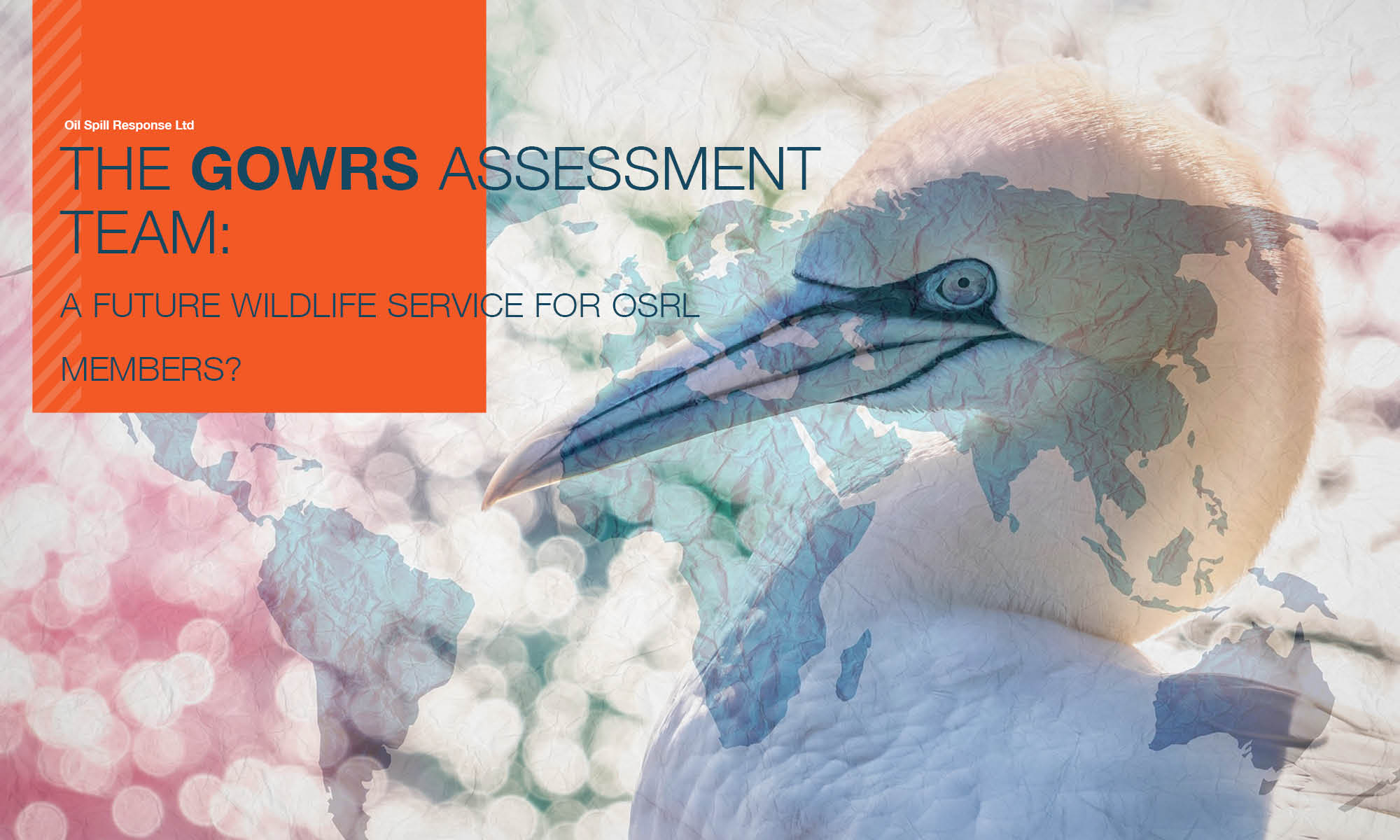 Recorded Webinar: The GOWRS Assessment Team - A future wildlife service for OSRL Members