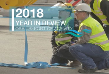 Report of Activity 2018